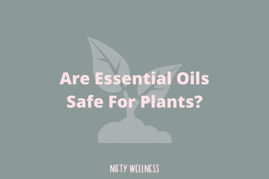 Are Essential Oils Safe For Plants