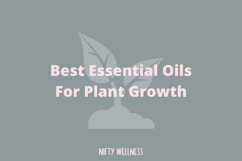 Best Essential Oils For Plant Growth