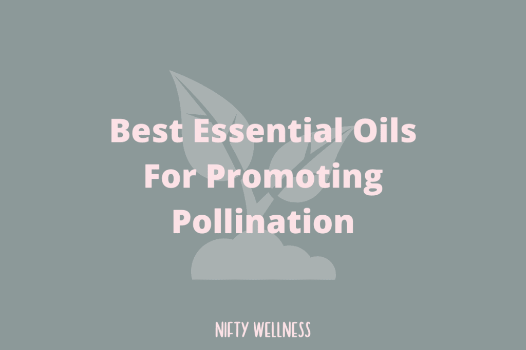 Best Essential Oils For Promoting Pollination